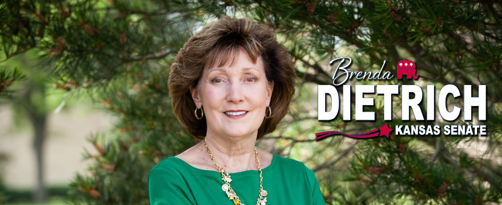 Brenda Dietrich for Senate